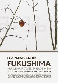 Fukushima book cover
