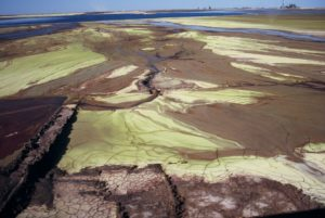 Tailings-Olympic-Dam_FOE